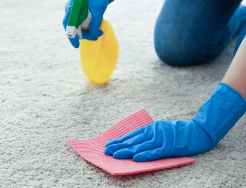 شركة تعقيم منازل في ام القيوين |0504715040|تطهير وتنظيف